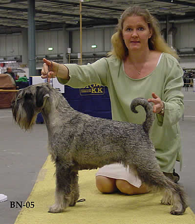 Jezzie as Best of Breed Stockholm 2005