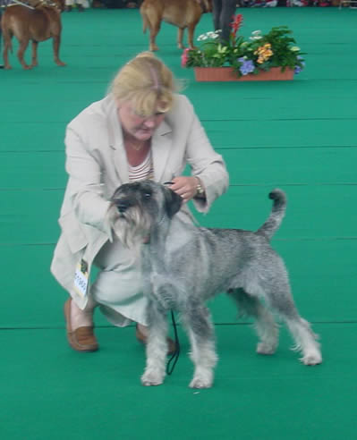 Ch Argenta's Oppenheim on The World Winnershow in Amsterdam 2002